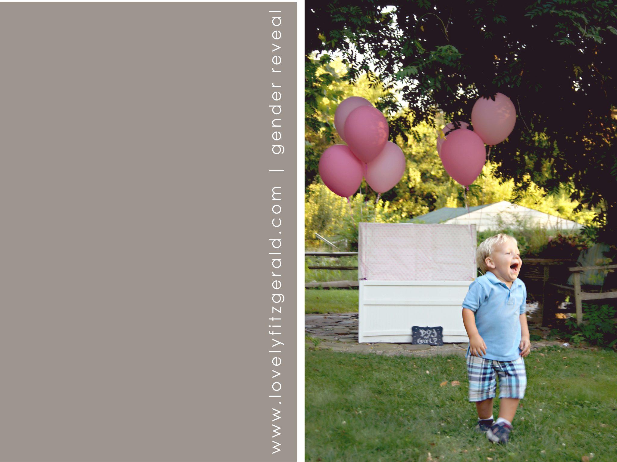 little elm gender reveal photographer