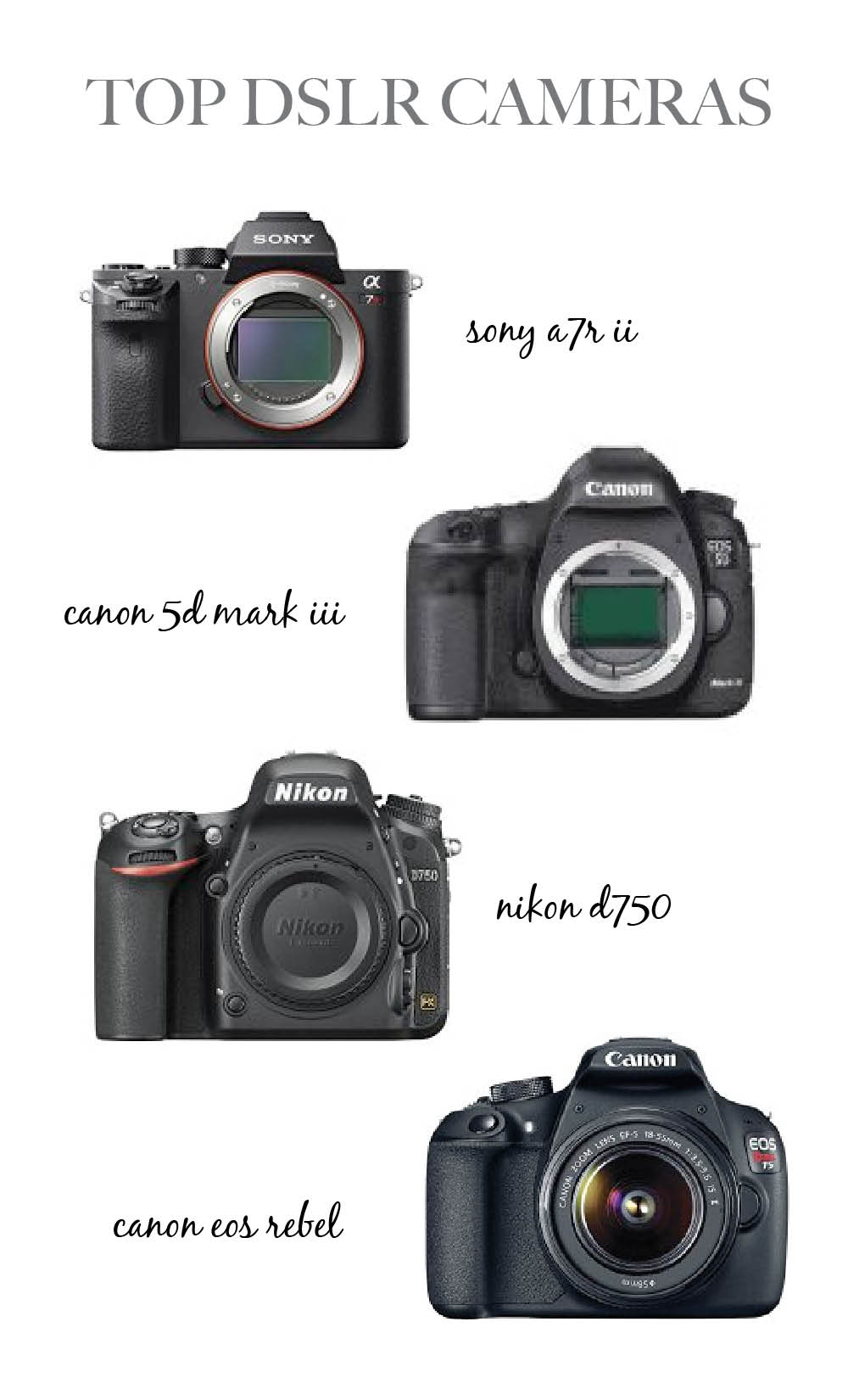 Top DSLR Cameras | Newborn Photography Studio Essentials - Lovely ...