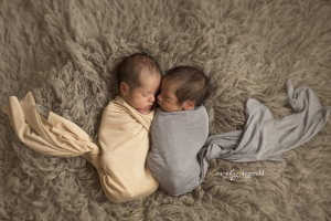 plano newborn twin photographer