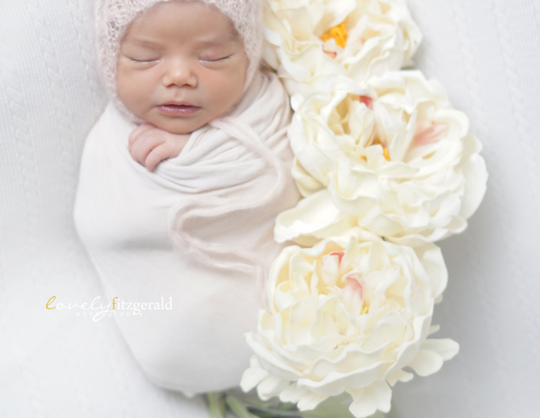 Studio Safety Policies & Session Tips | Dallas Newborn Photographer